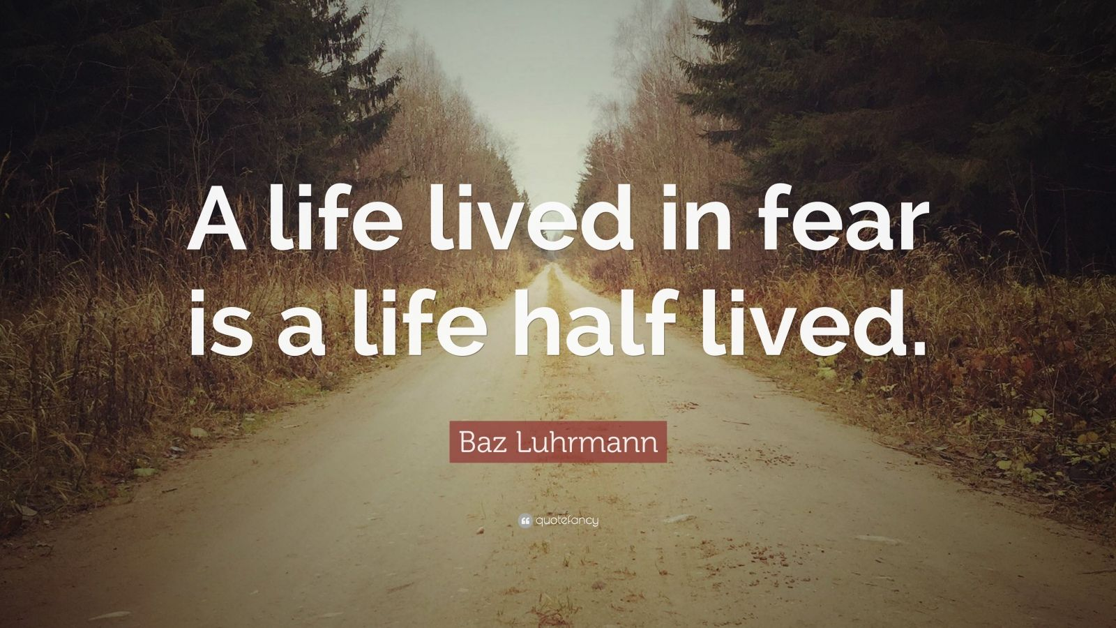 a life half lived Half-life definition is - the time required for half of something to undergo a process: such as how to use half-life in a sentence the time required for half of something to undergo a process: such as.
