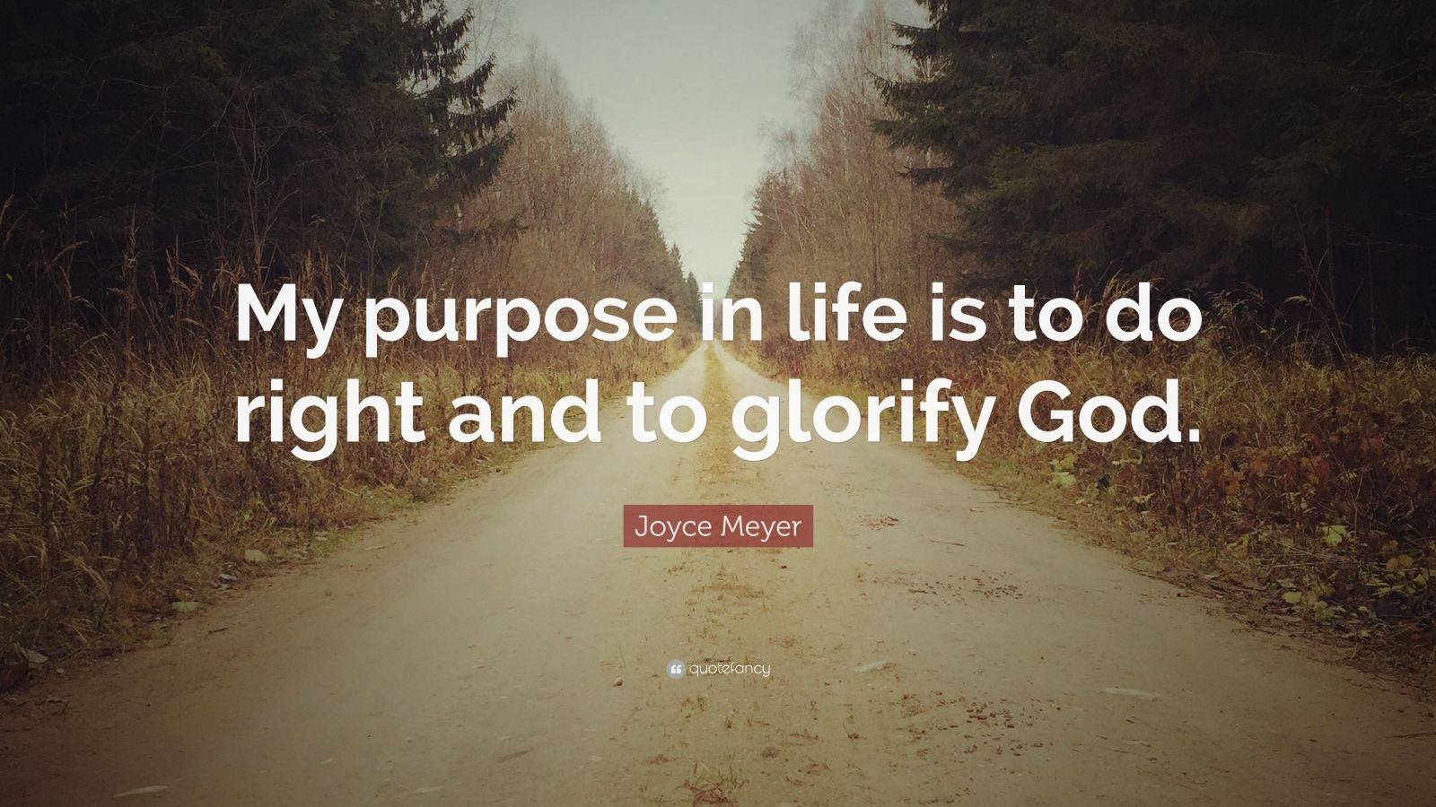 "Joyce Meyer Quote: ""My purpose in life is to do right and to glorify God."""