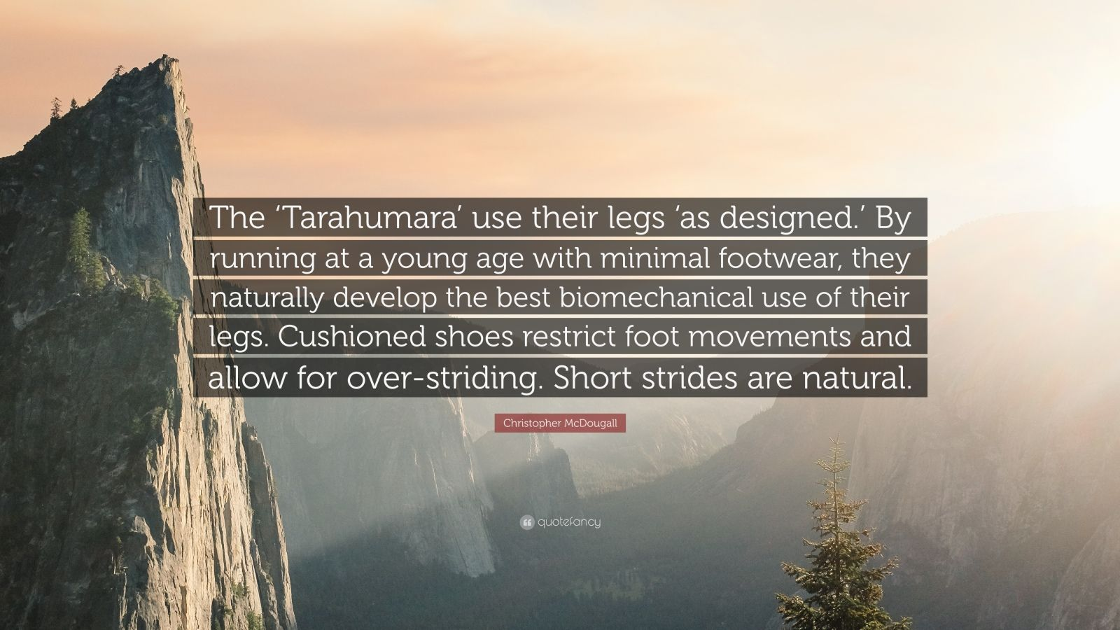 """Christopher McDougall Quote: """"The 'Tarahumara' use their legs 'as designed.' By running at a young age with minimal footwear, they naturally develop the best biomechanical use of their legs. Cushioned shoes restrict foot movements and allow for over-striding. Short strides are natural."""""""