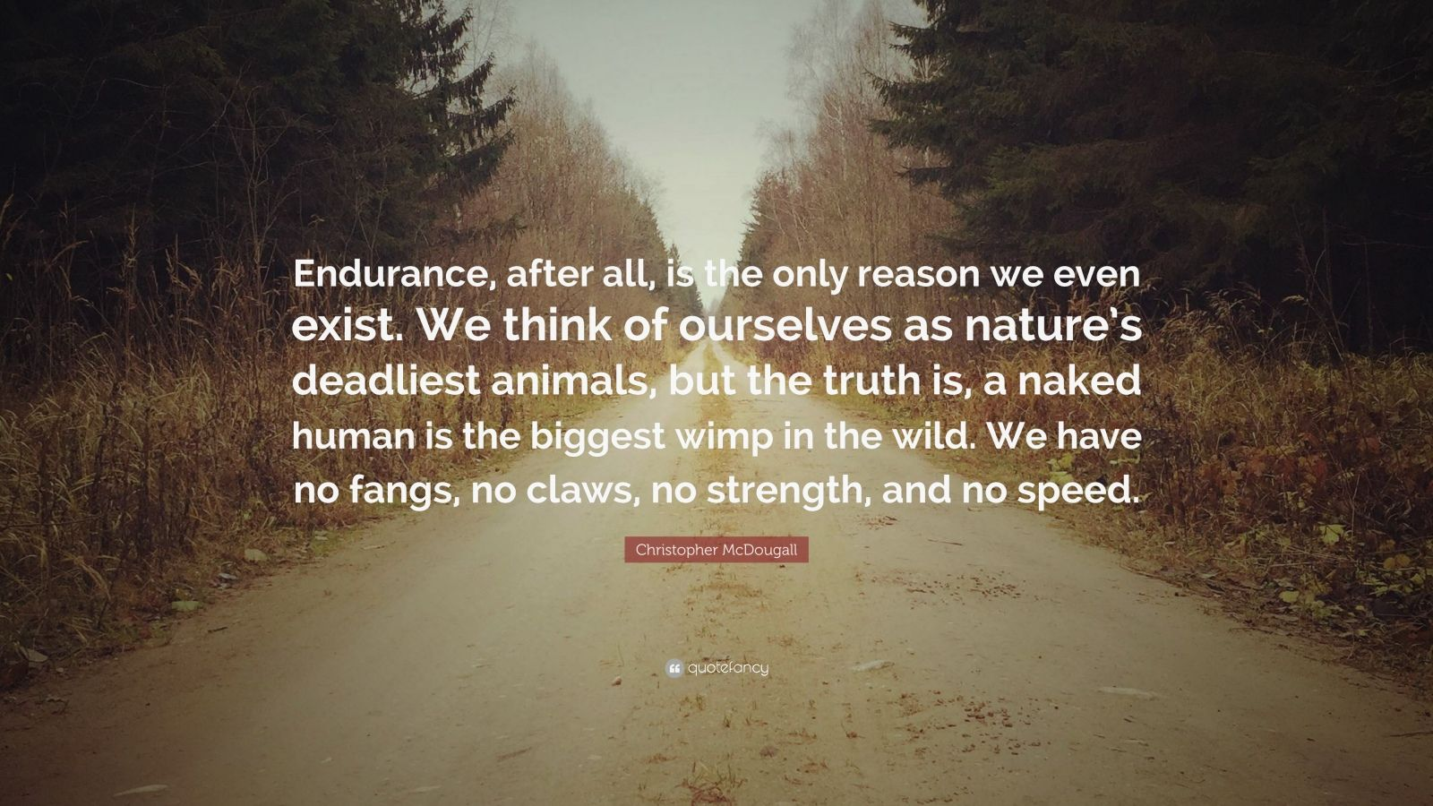 """Christopher McDougall Quote: """"Endurance, after all, is the only reason we even exist. We think of ourselves as nature's deadliest animals, but the truth is, a naked human is the biggest wimp in the wild. We have no fangs, no claws, no strength, and no speed."""""""