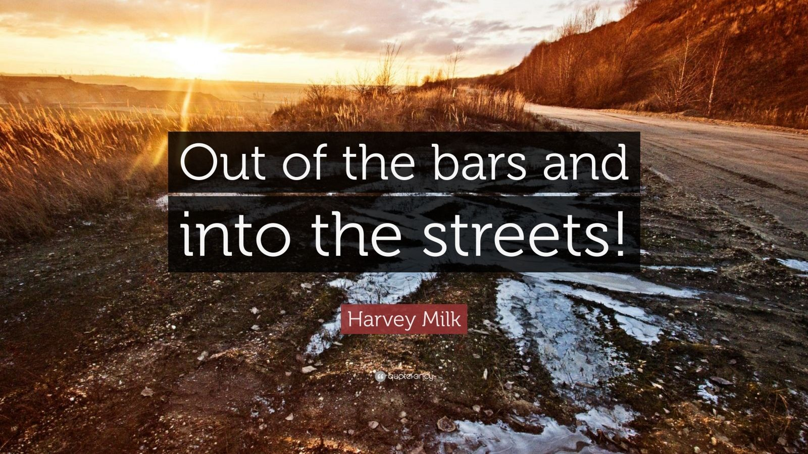 """Harvey Milk Quote: """"Out of the bars and into the streets!"""""""