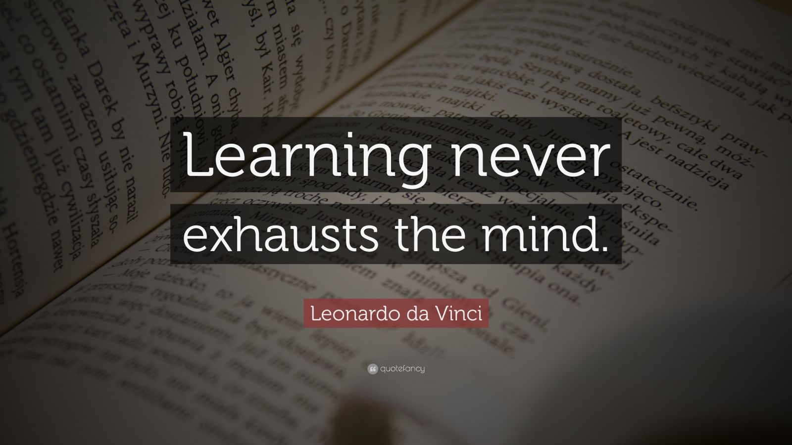 "Leonardo da Vinci Quote: ""Learning never exhausts the mind."""