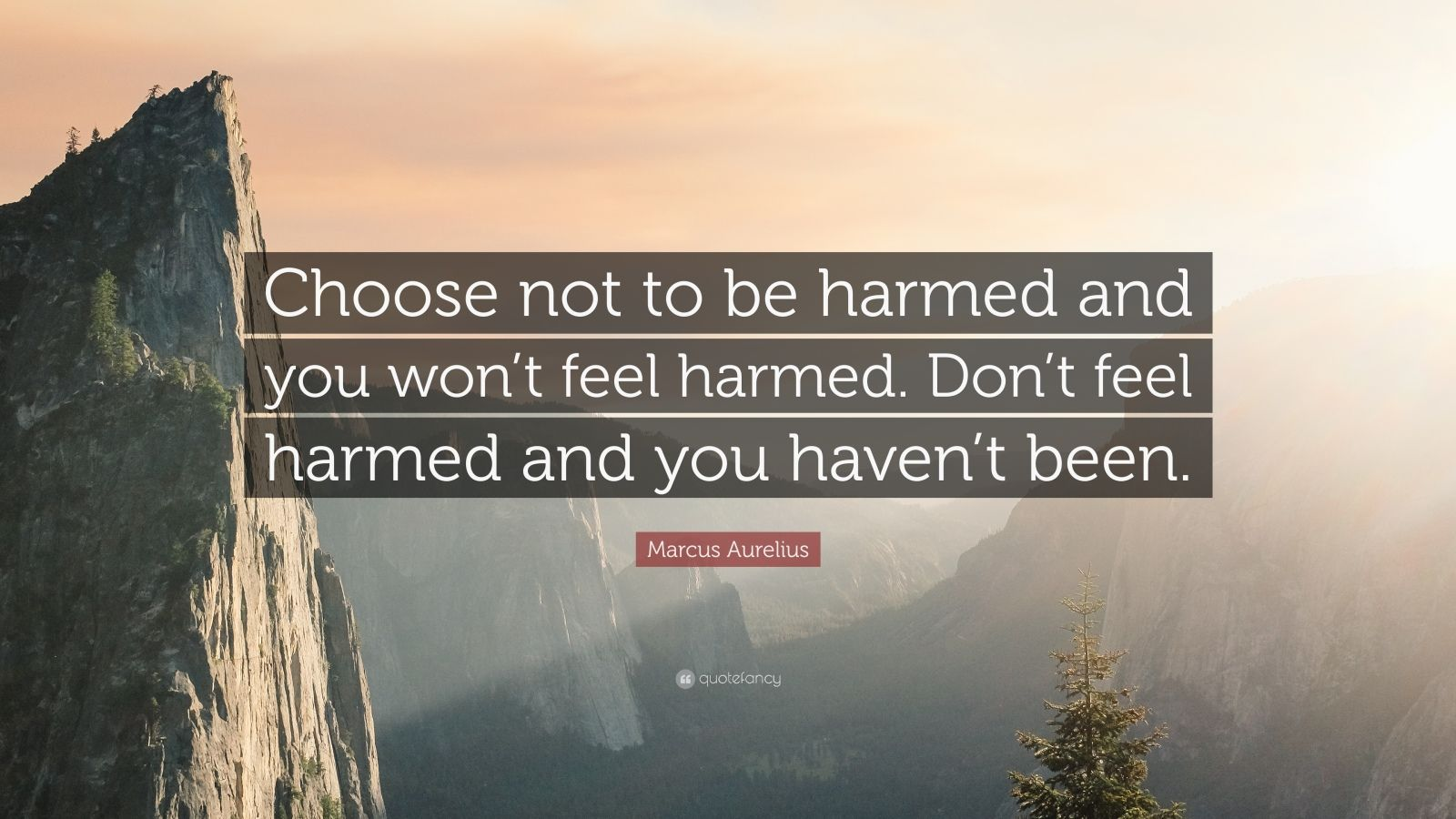 """Marcus Aurelius Quote: """"Choose not to be harmed and you won't feel harmed. Don't feel harmed and you haven't been."""""""