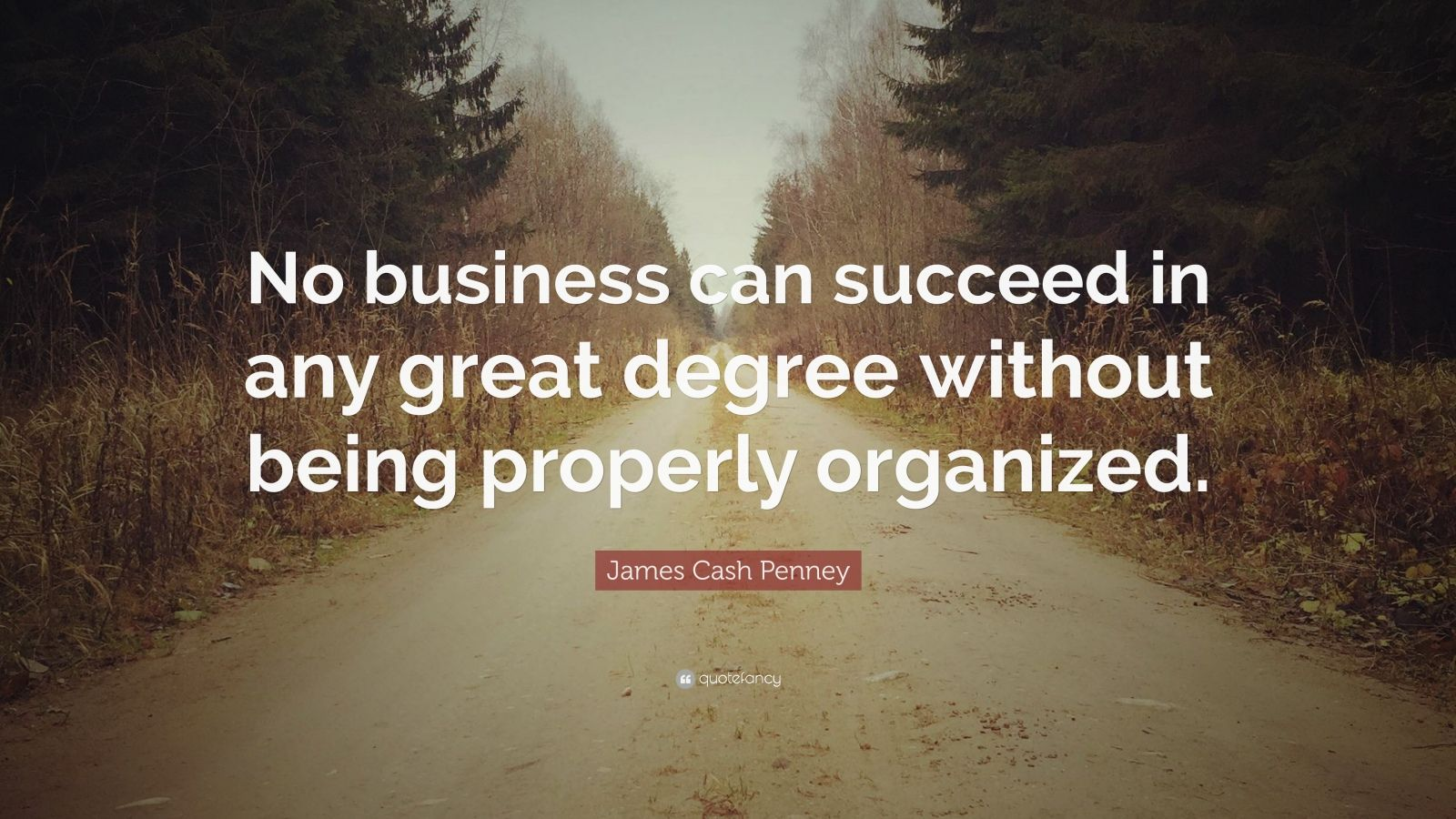"""James Cash Penney Quote: """"No business can succeed in any great degree without being properly organized."""""""