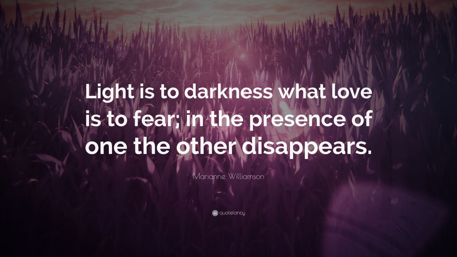 "Marianne Williamson Quote: ""Light is to darkness what love is to fear; in the presence of one the other disappears."""