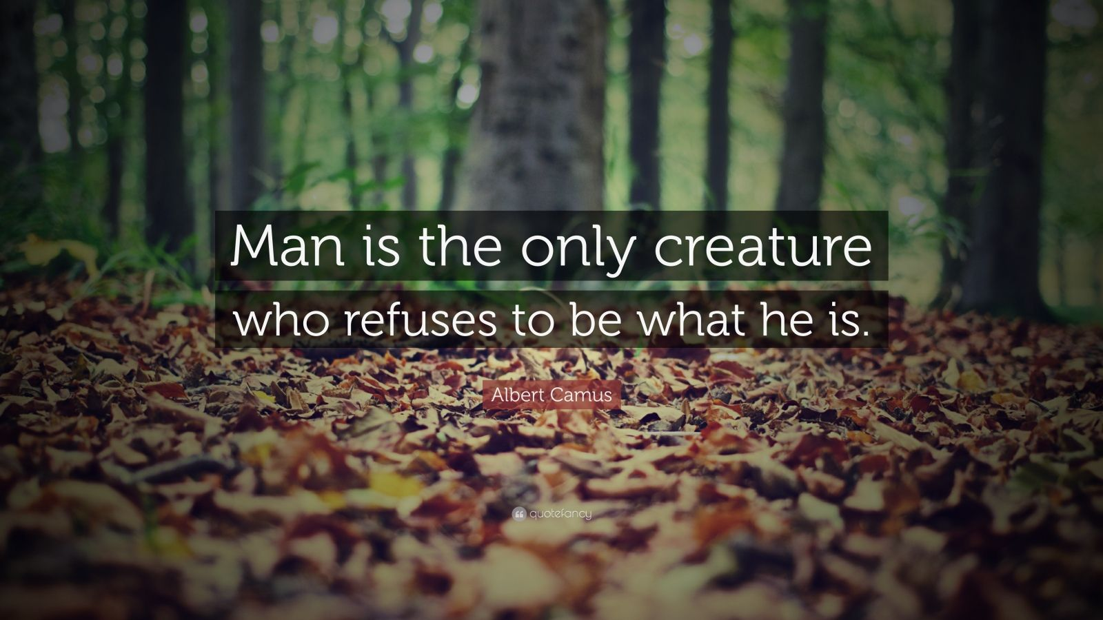 "Albert Camus Quote: ""Man is the only creature who refuses to be what he is."""