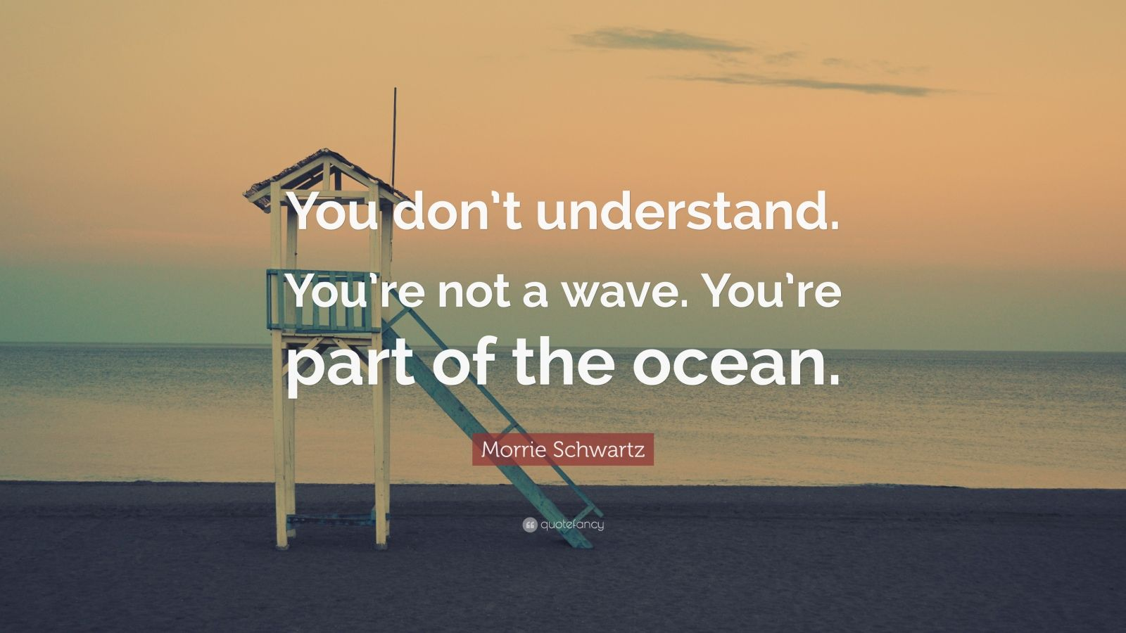 "Morrie Schwartz Quote: ""You don't understand. You're not a wave. You're part of the ocean."""