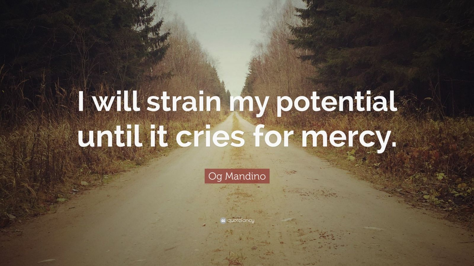 "Og Mandino Quote: ""I will strain my potential until it cries for mercy."""