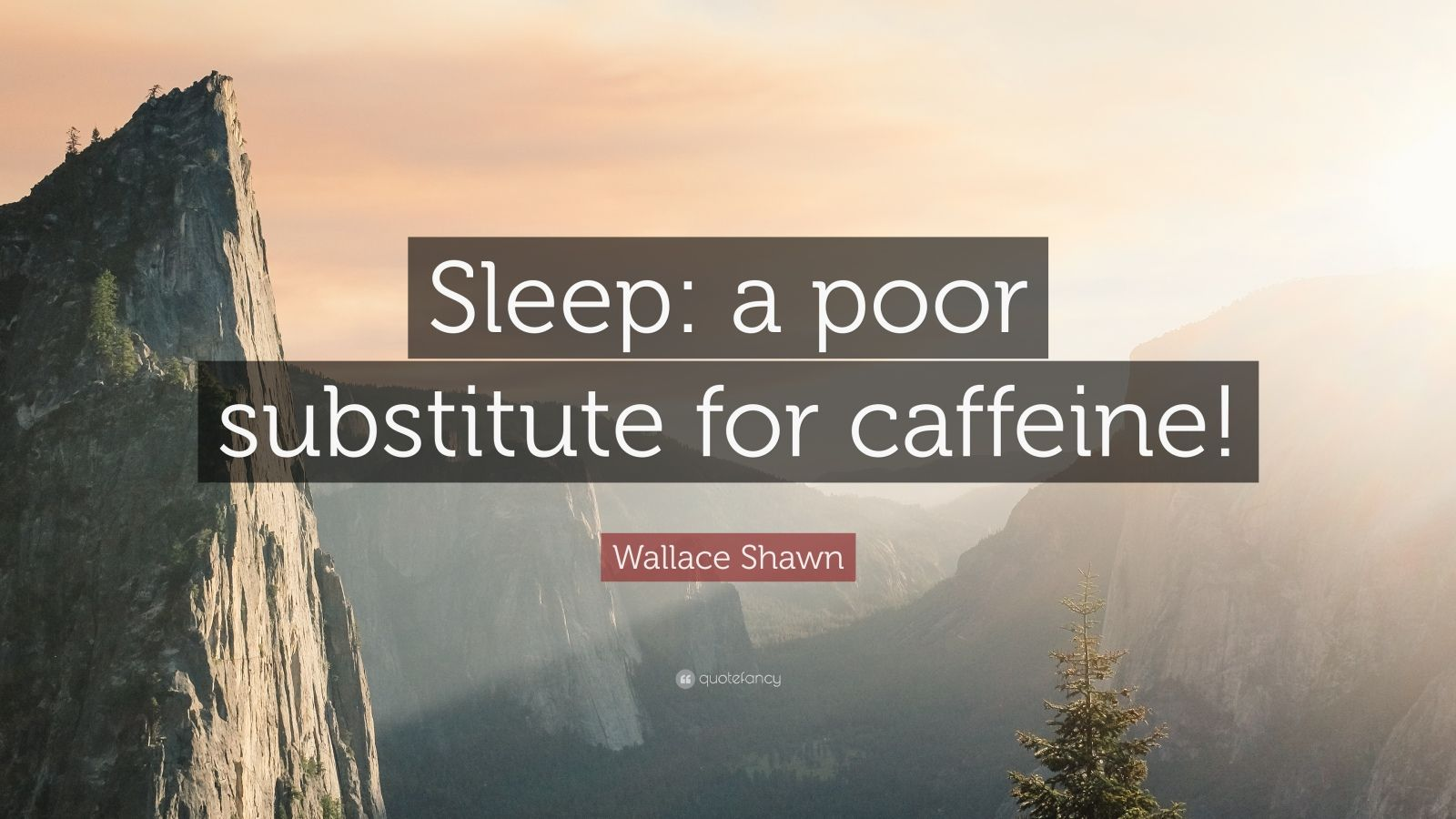 """Wallace Shawn Quote: """"Sleep: A Poor Substitute For"""