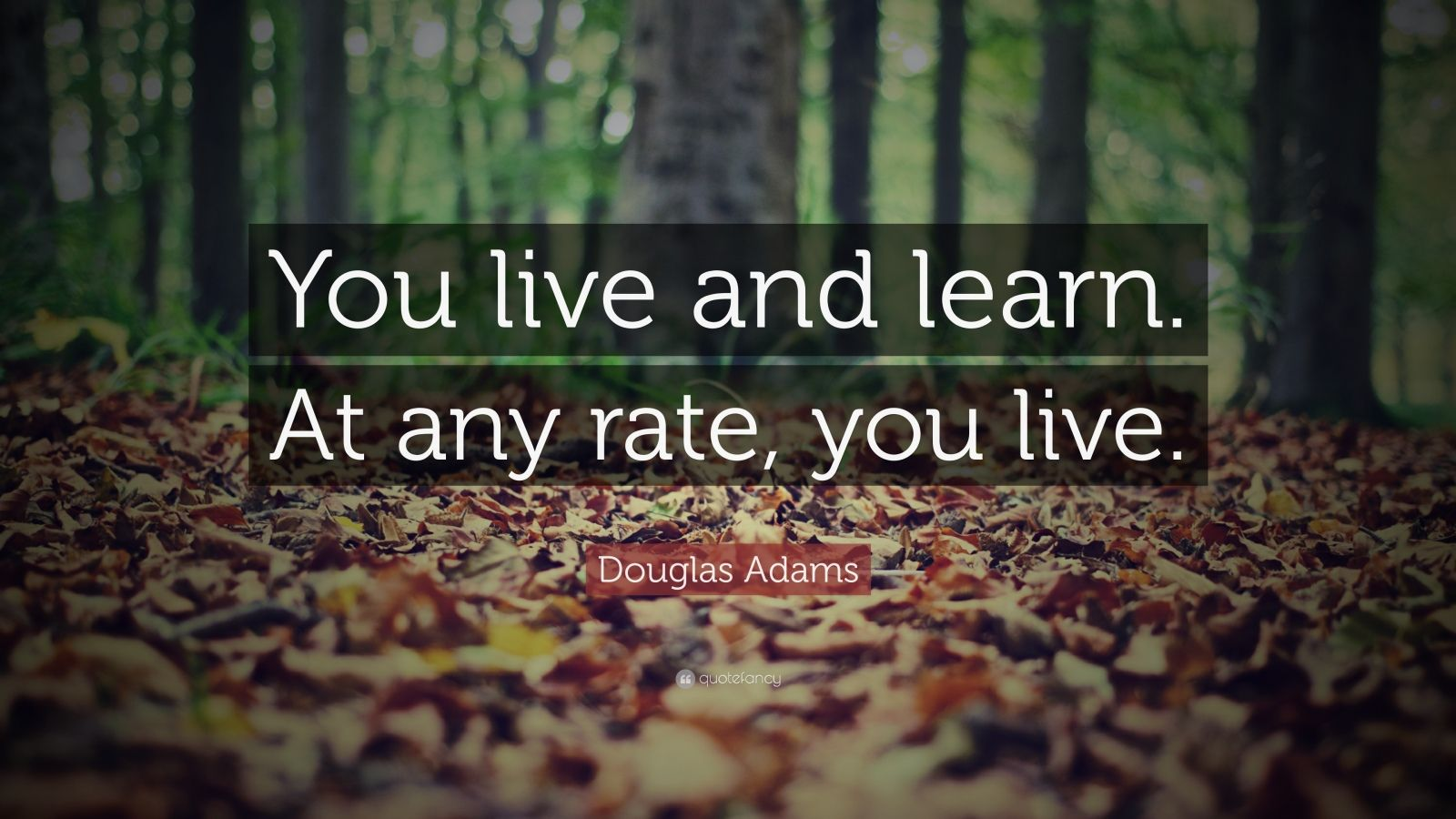 "Douglas Adams Quote: ""You live and learn. At any rate, you live."""