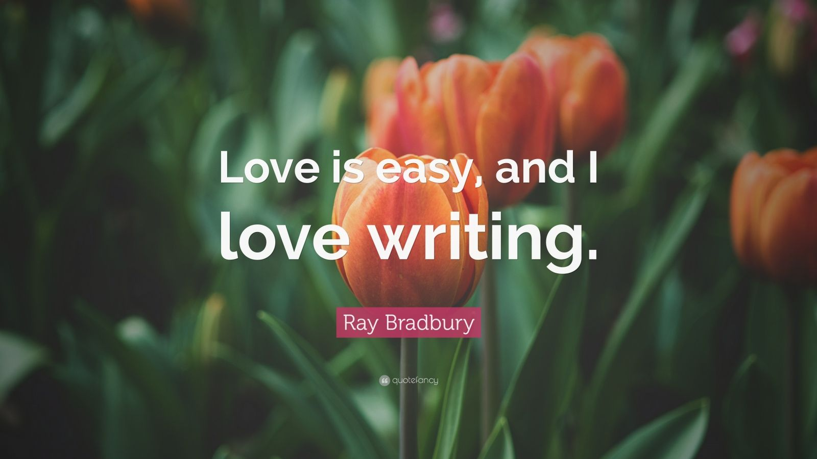 "Ray Bradbury Quote: ""Love is easy, and I love writing."""