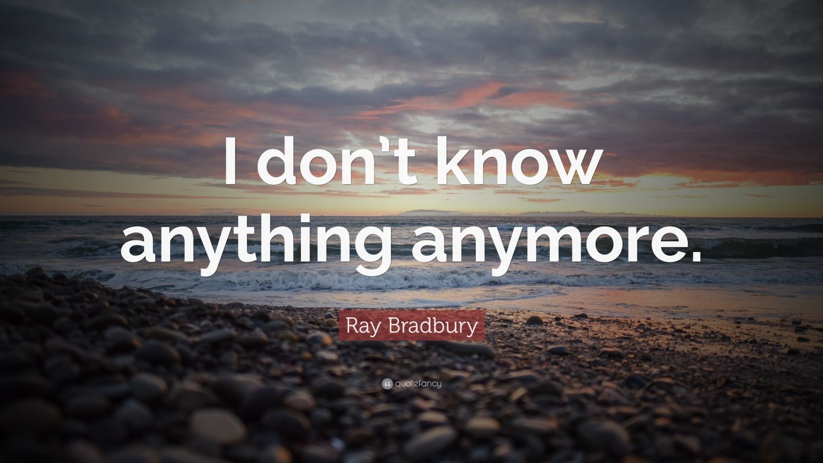 """Ray Bradbury Quote: """"I don't know anything anymore."""""""