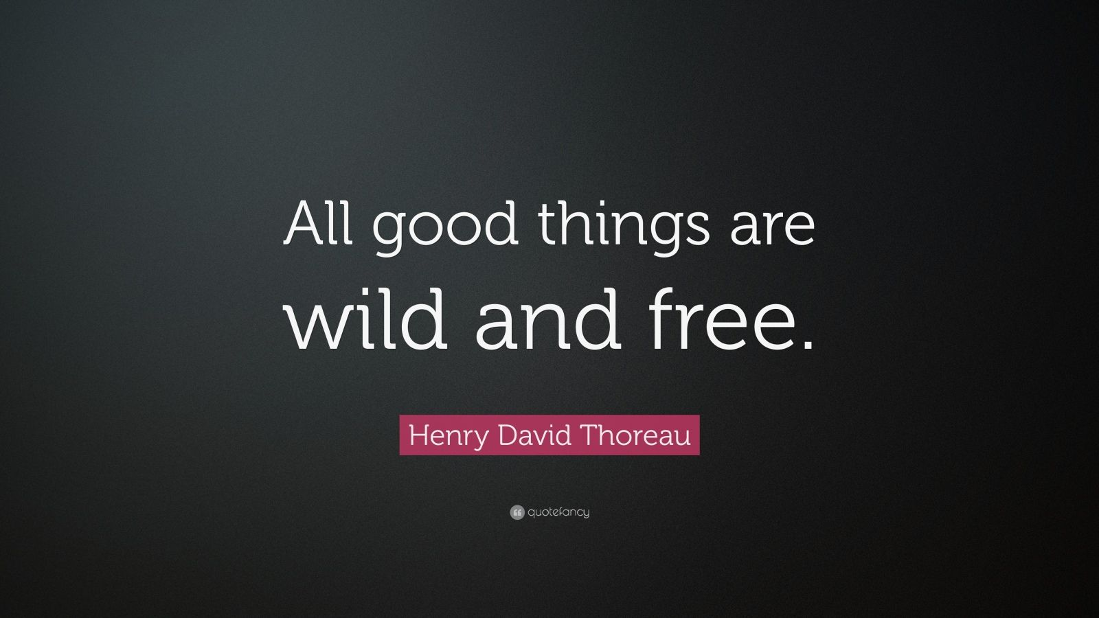 why is henry david thoreau credible