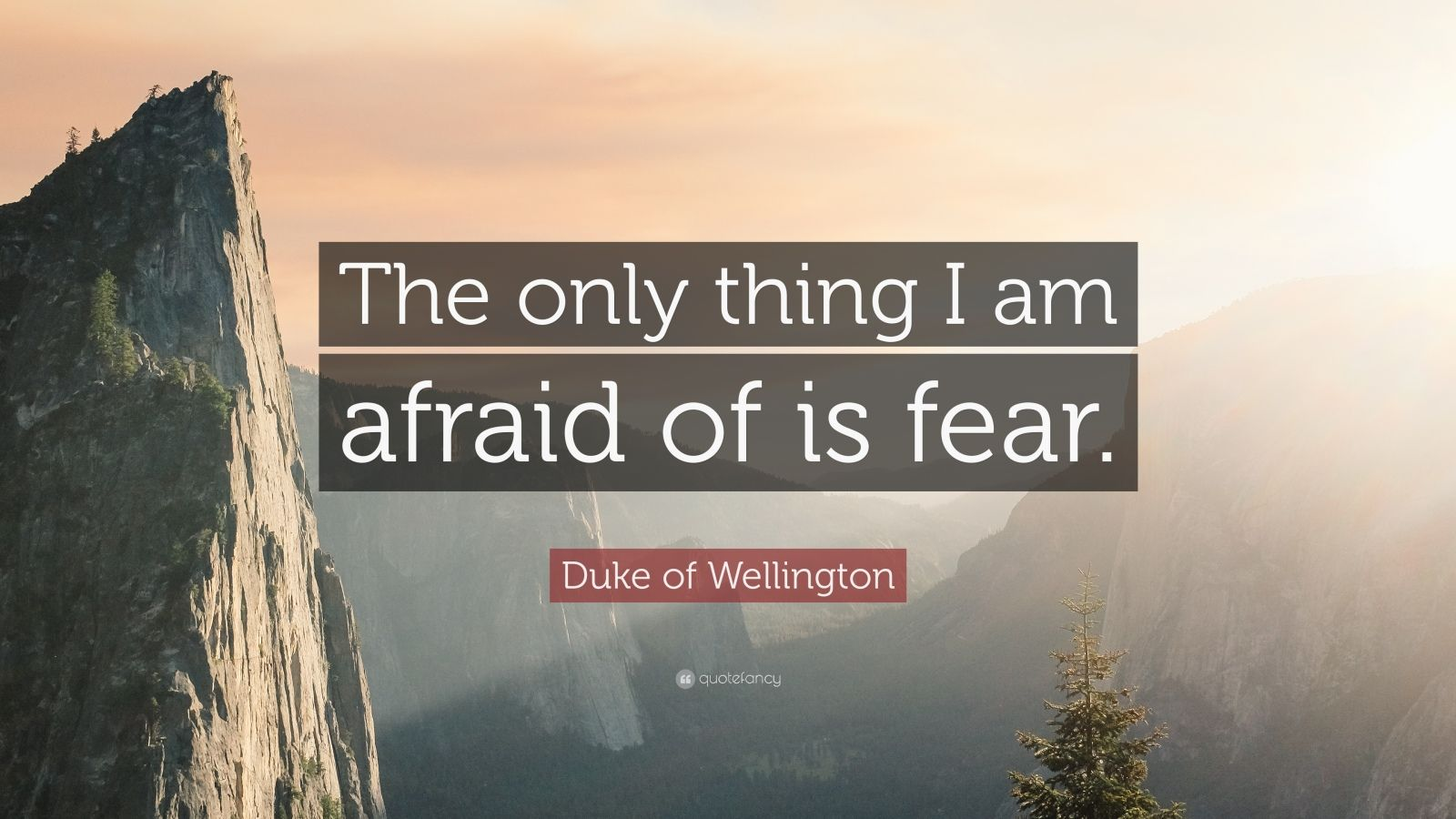 "Duke of Wellington Quote: ""The only thing I am afraid of is fear."""