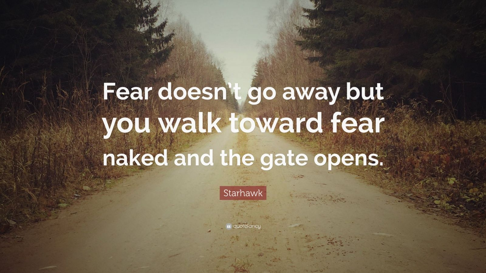 """Starhawk Quote: """"Fear doesn't go away but you walk toward fear naked and the gate opens."""""""