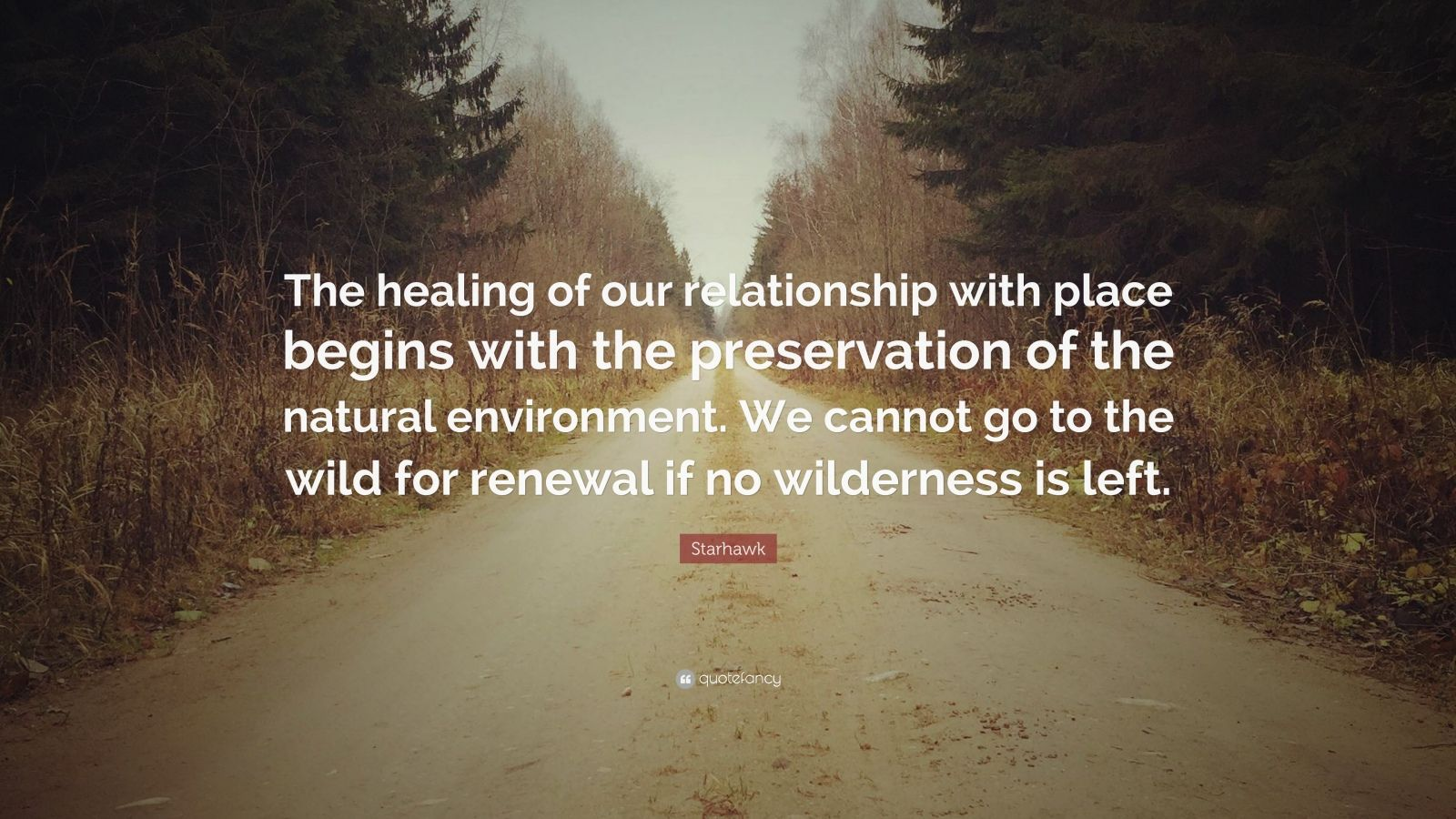 "Starhawk Quote: ""The healing of our relationship with place begins with the preservation of the natural environment. We cannot go to the wild for renewal if no wilderness is left."""