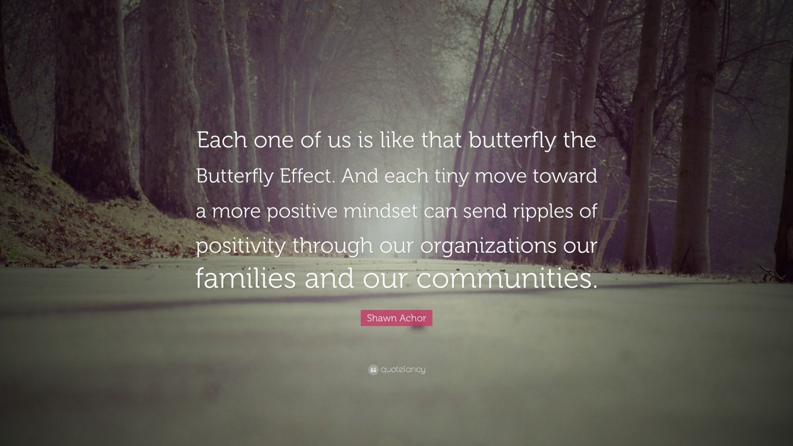 "Shawn Achor Quote: ""Each one of us is like that butterfly the Butterfly Effect. And each tiny move toward a more positive mindset can send ripples of positivity through our organizations our families and our communities."""