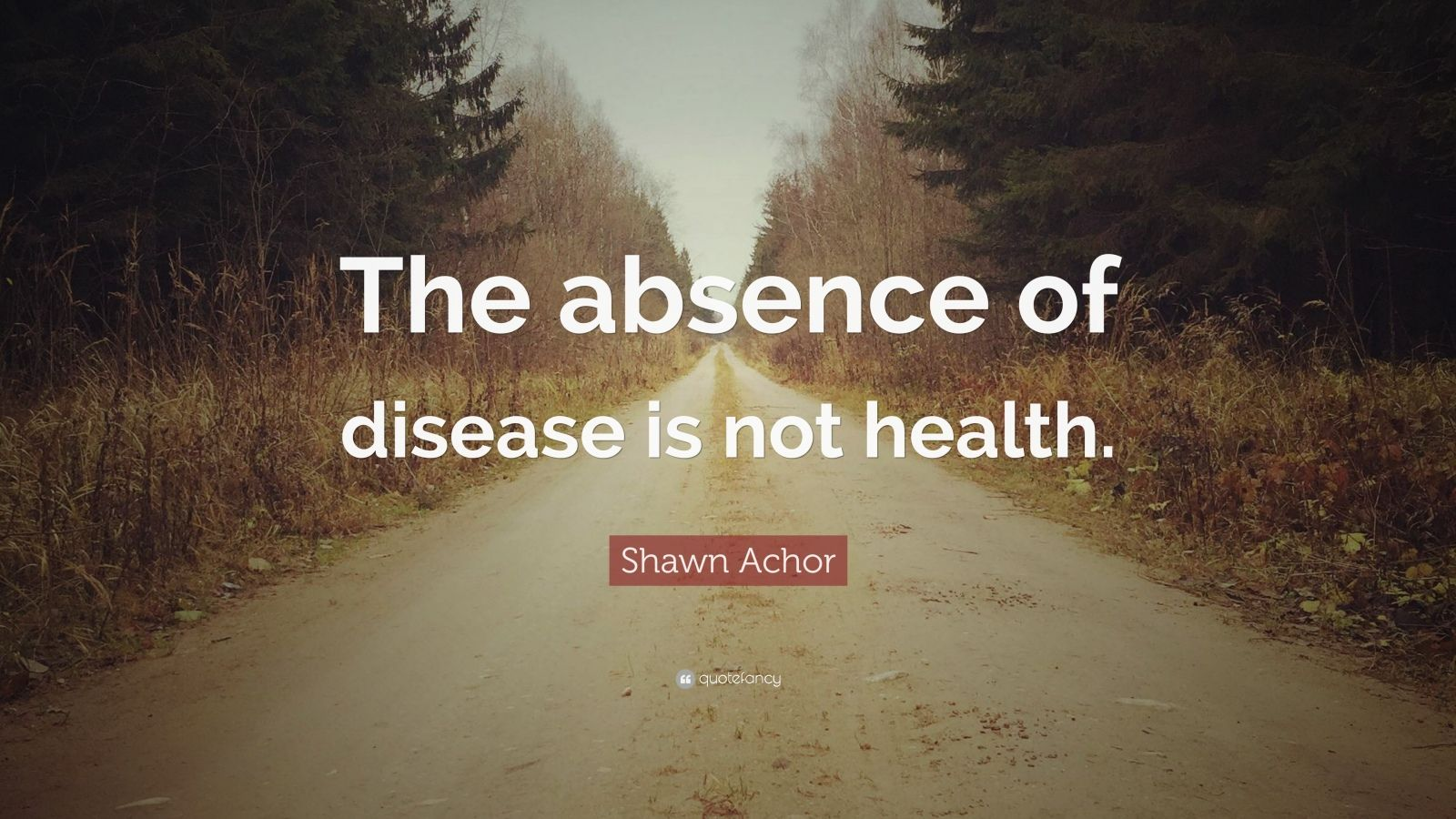 """Shawn Achor Quote: """"The absence of disease is not health."""""""