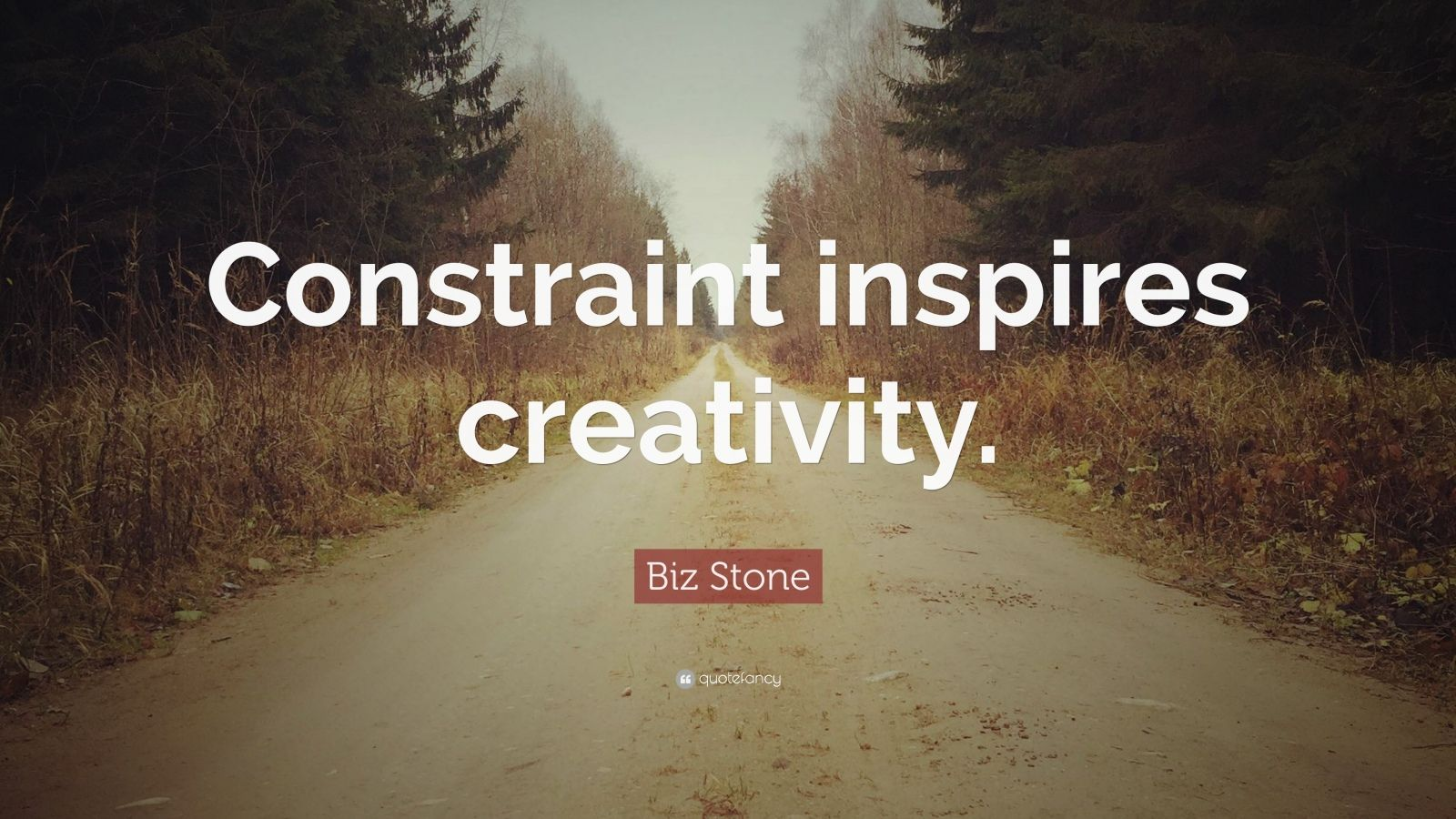 "Biz Stone Quote: ""Constraint inspires creativity."""