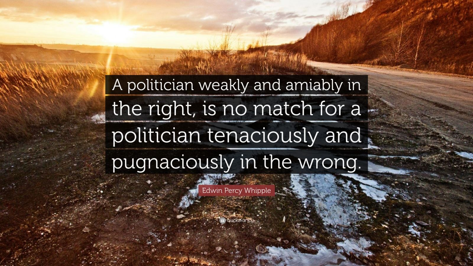"""Edwin Percy Whipple Quote: """"A politician weakly and amiably in the right, is no match for a politician tenaciously and pugnaciously in the wrong."""""""