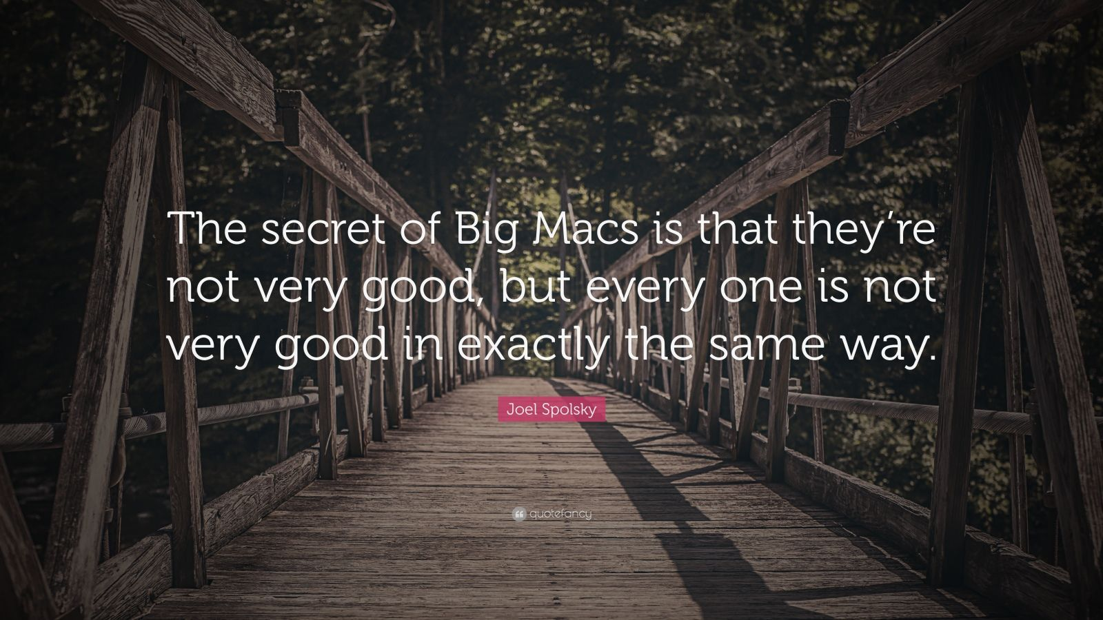 "Joel Spolsky Quote: ""The secret of Big Macs is that they're not very good, but every one is not very good in exactly the same way."""