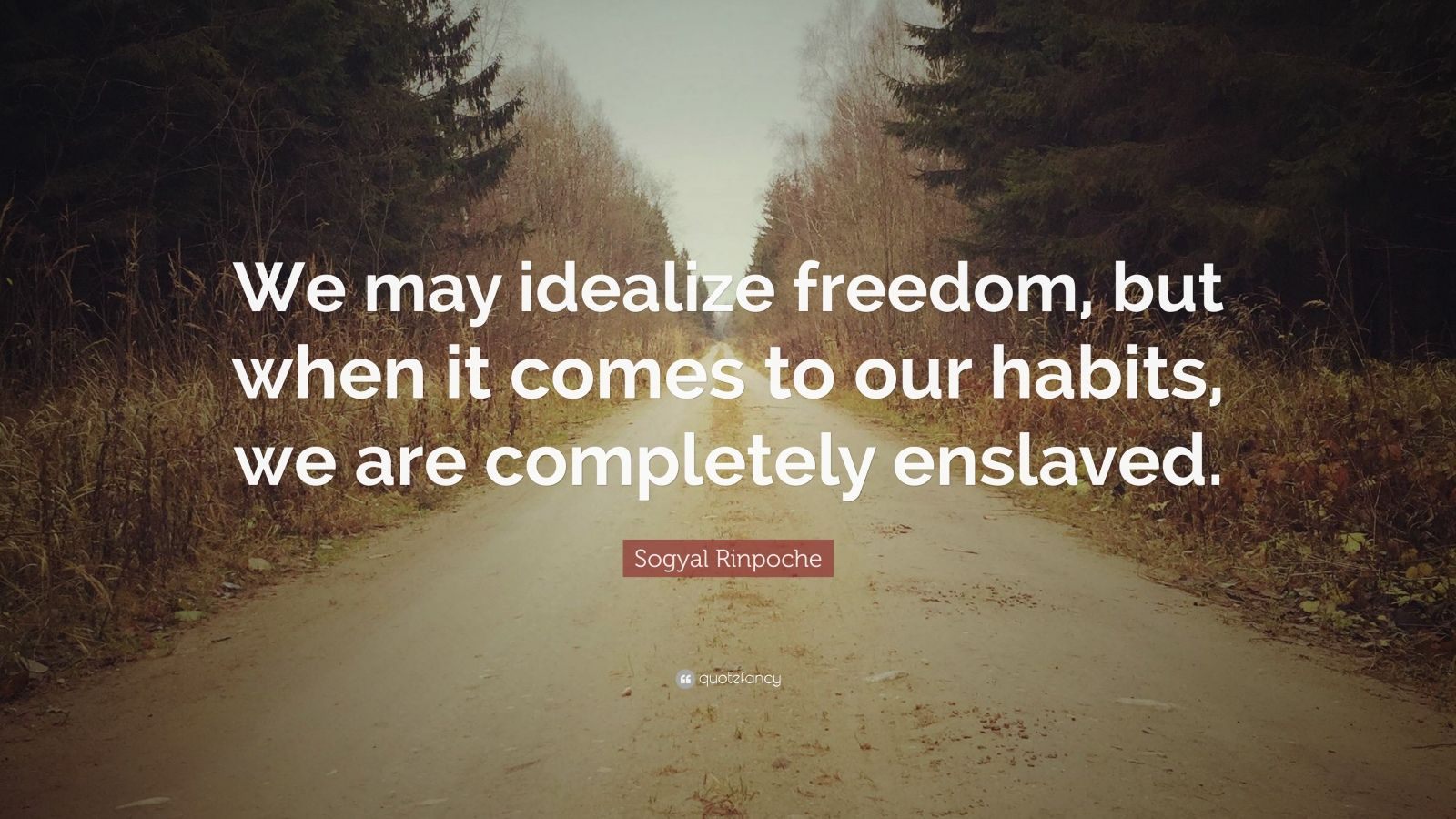 """Sogyal Rinpoche Quote: """"We may idealize freedom, but when it comes to our habits, we are completely enslaved."""""""