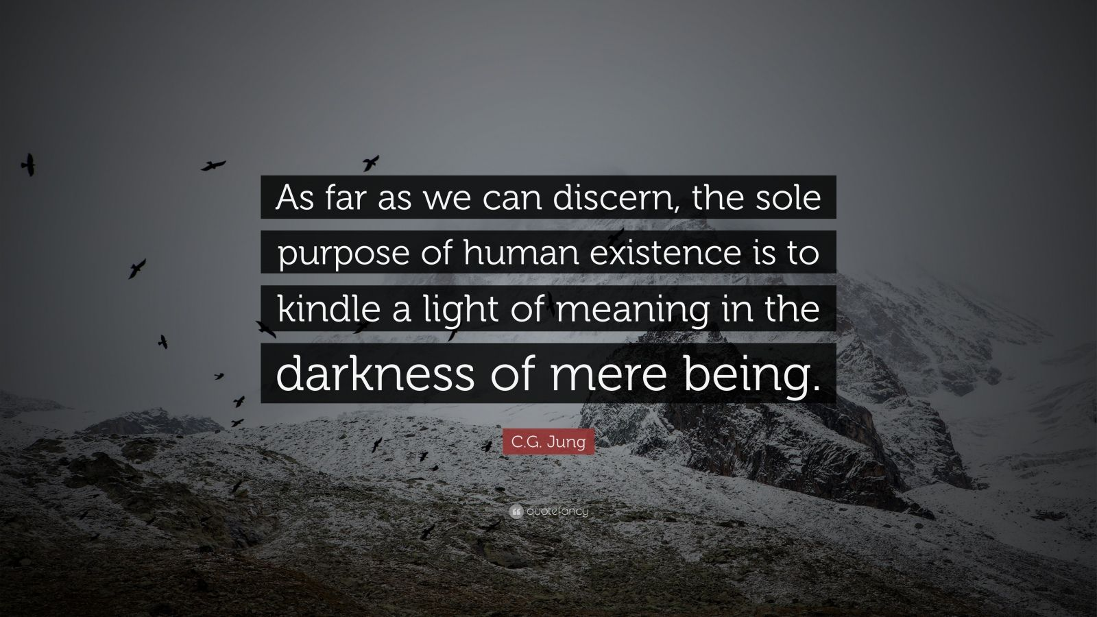 "C.G. Jung Quote: ""As far as we can discern, the sole purpose of human existence is to kindle a light of meaning in the darkness of mere being."""