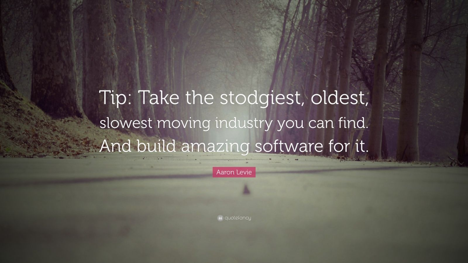 "Aaron Levie Quote: ""Tip: Take the stodgiest, oldest, slowest moving industry you can find. And build amazing software for it."""