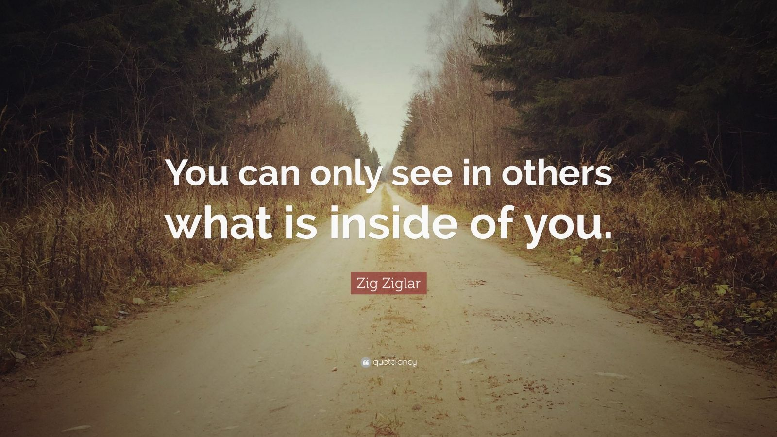 """Zig Ziglar Quote: """"You can only see in others what is inside of you."""""""