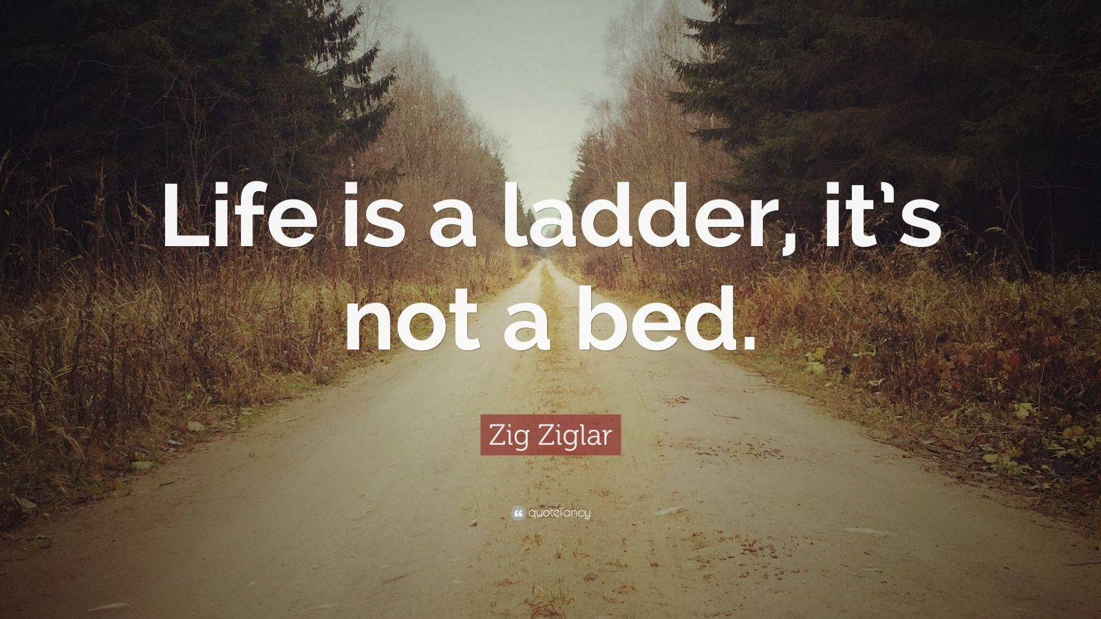 """Zig Ziglar Quote: """"Life is a ladder, it's not a bed."""""""