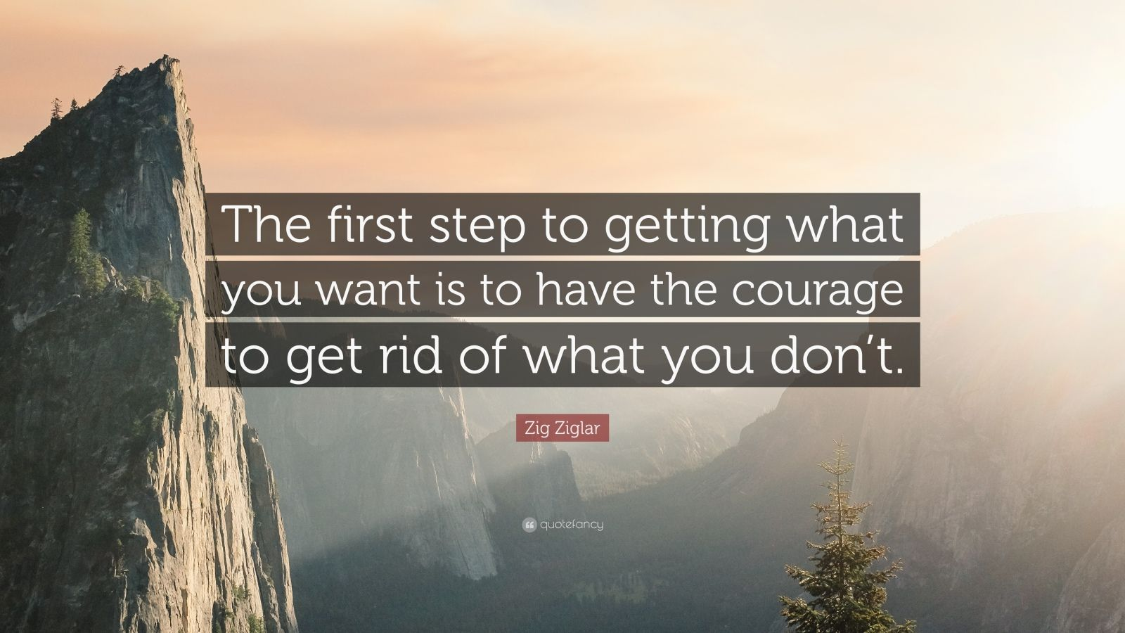 """Zig Ziglar Quote: """"The first step to getting what you want is to have the courage to get rid of what you don't."""""""