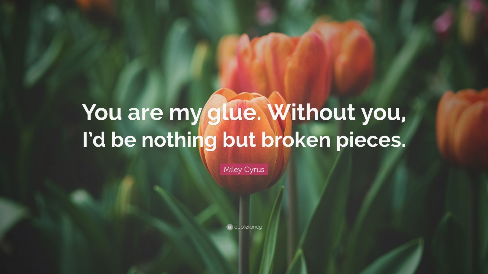 "Miley Cyrus Quote: ""You are my glue. Without you, I'd be nothing but broken pieces."""