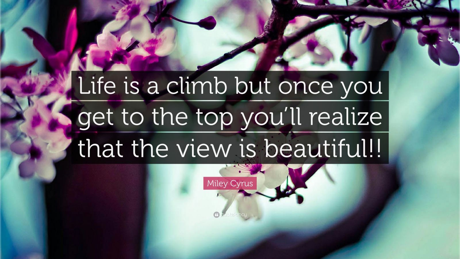 "Miley Cyrus Quote: ""Life is a climb but once you get to the top you'll realize that the view is beautiful!!"""