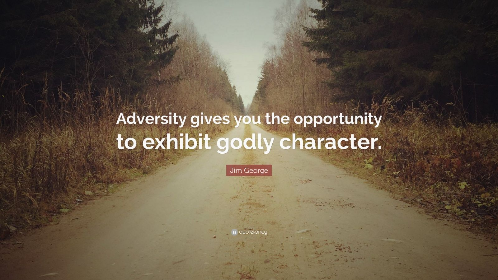 """Jim George Quote: """"Adversity gives you the opportunity to exhibit godly character."""""""