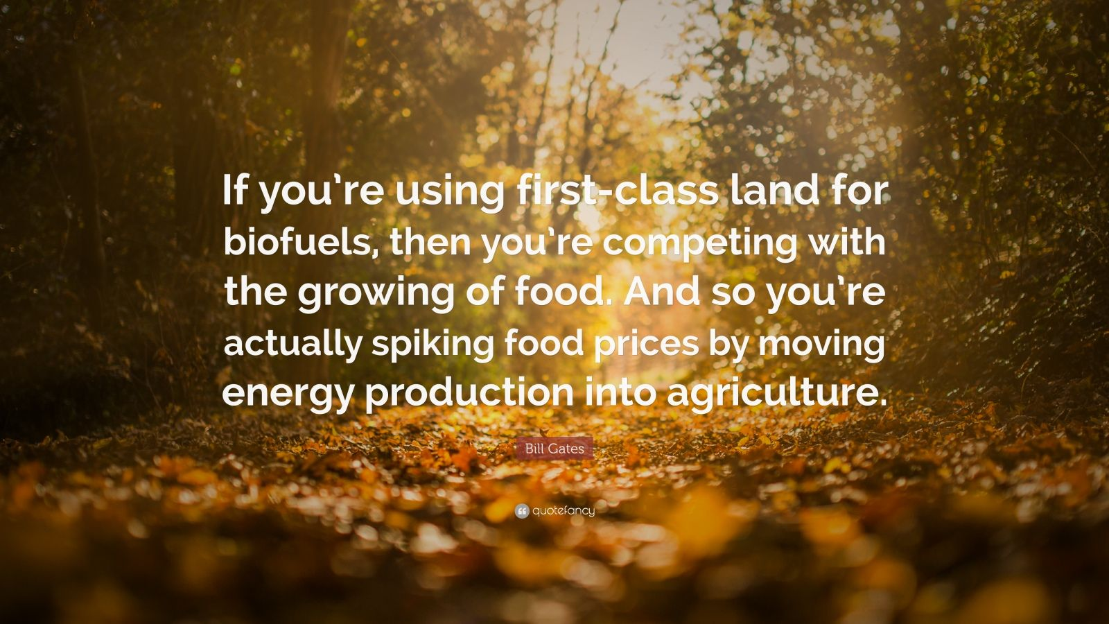 "Bill Gates Quote: ""If you're using first-class land for biofuels, then you're competing with the growing of food. And so you're actually spiking food prices by moving energy production into agriculture."""