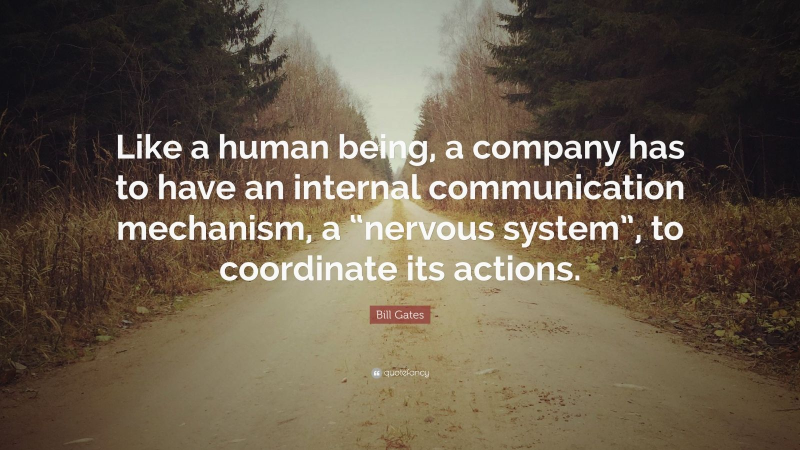"Bill Gates Quote: ""Like a human being, a company has to have an internal communication mechanism, a ""nervous system"", to coordinate its actions."""