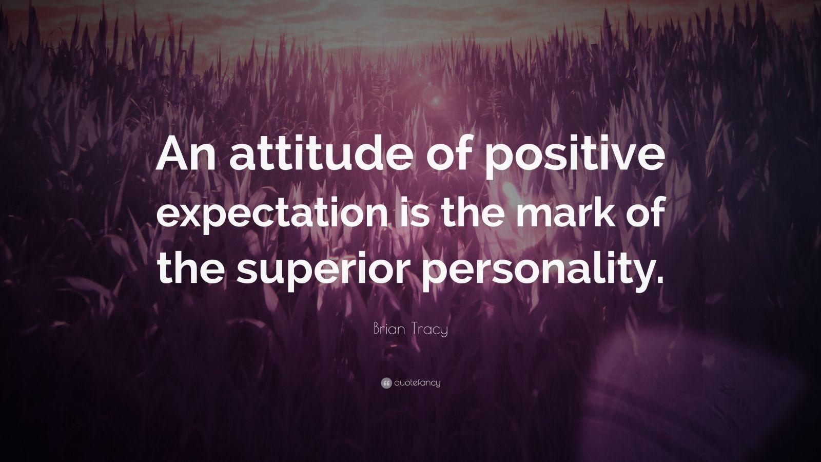 "Brian Tracy Quote: ""An attitude of positive expectation is the mark of the superior personality."""
