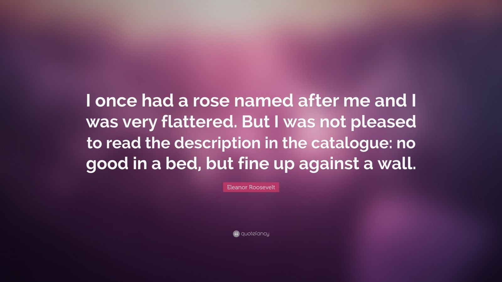 "Eleanor Roosevelt Quote: ""I once had a rose named after me and I was very flattered. But I was not pleased to read the description in the catalogue: no good in a bed, but fine up against a wall."""