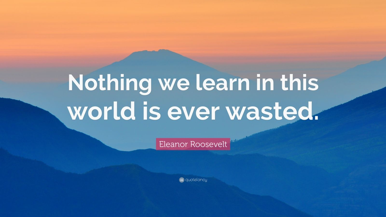 """Eleanor Roosevelt Quote: """"Nothing we learn in this world is ever wasted."""""""