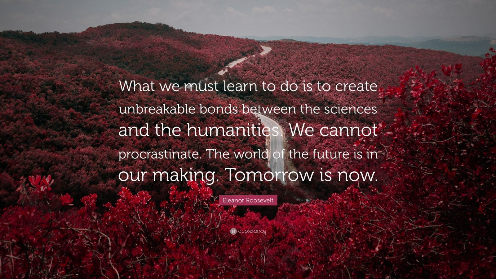 """Eleanor Roosevelt Quote: """"What we must learn to do is to create unbreakable bonds between the sciences and the humanities. We cannot procrastinate. The world of the future is in our making. Tomorrow is now."""""""