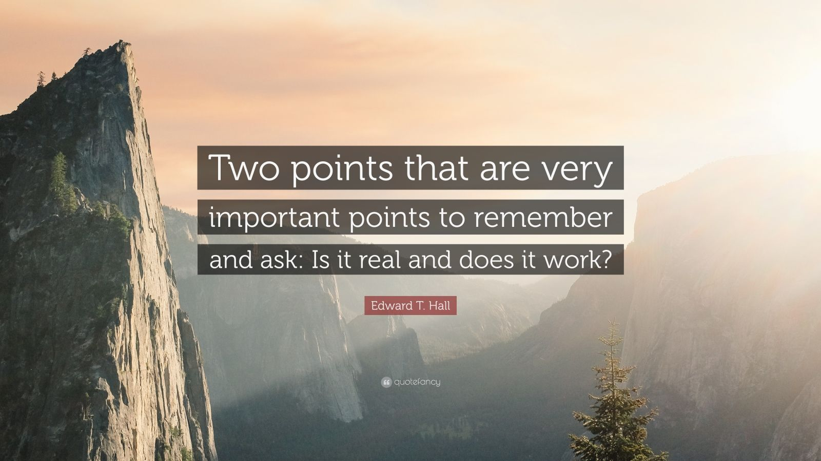 "Edward T Hall Quotes: Edward T. Hall Quote: ""Two Points That Are Very Important"
