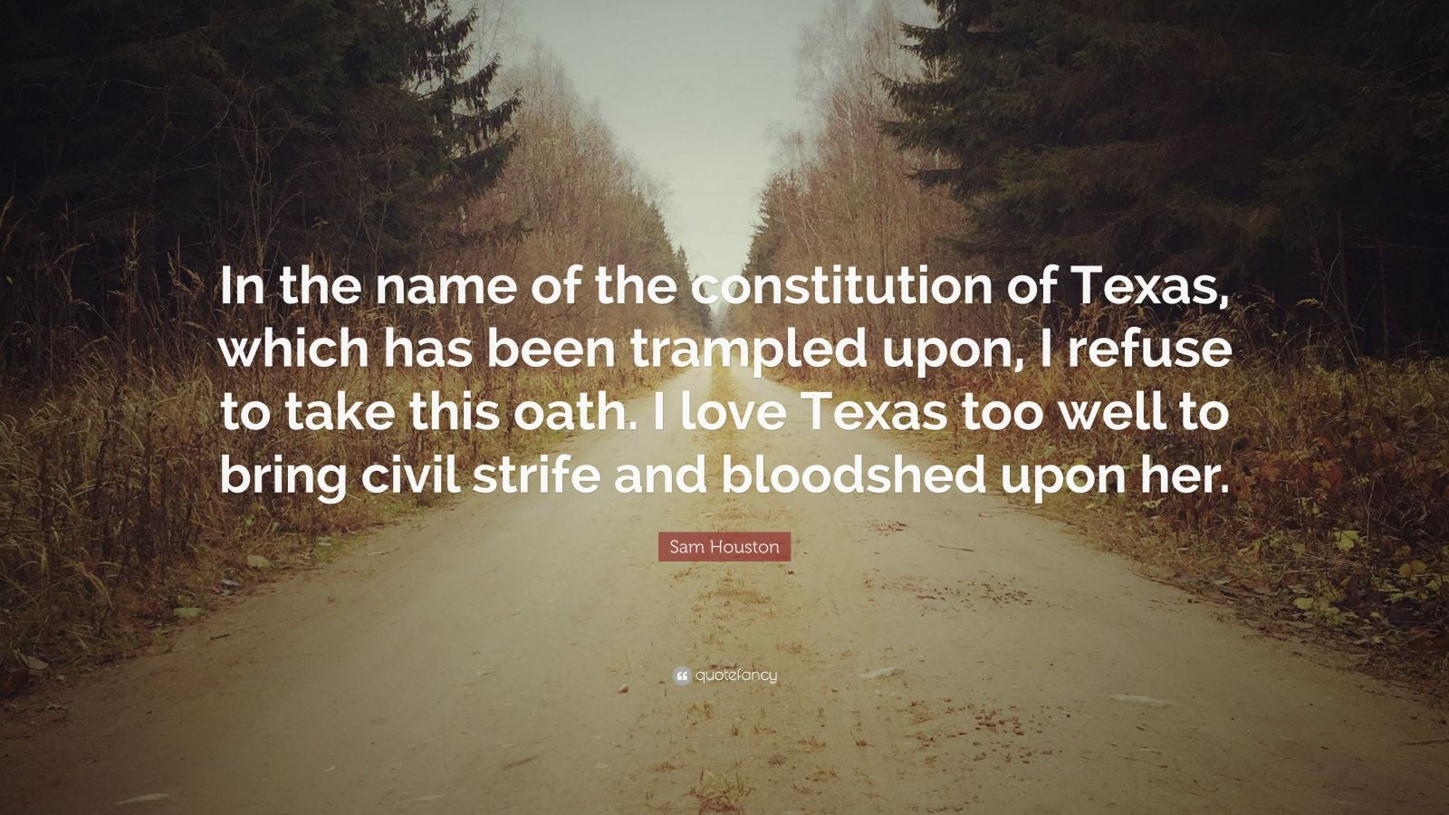 """Sam Houston Quote: """"In the name of the constitution of ..."""