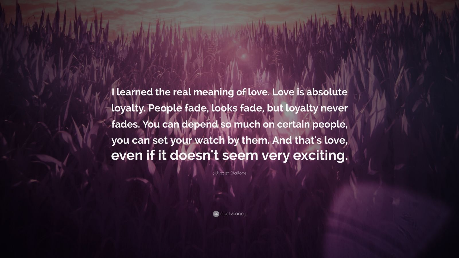 The Meaning Of I Love You Quotes: Sylvester Stallone Quotes (100 Wallpapers)