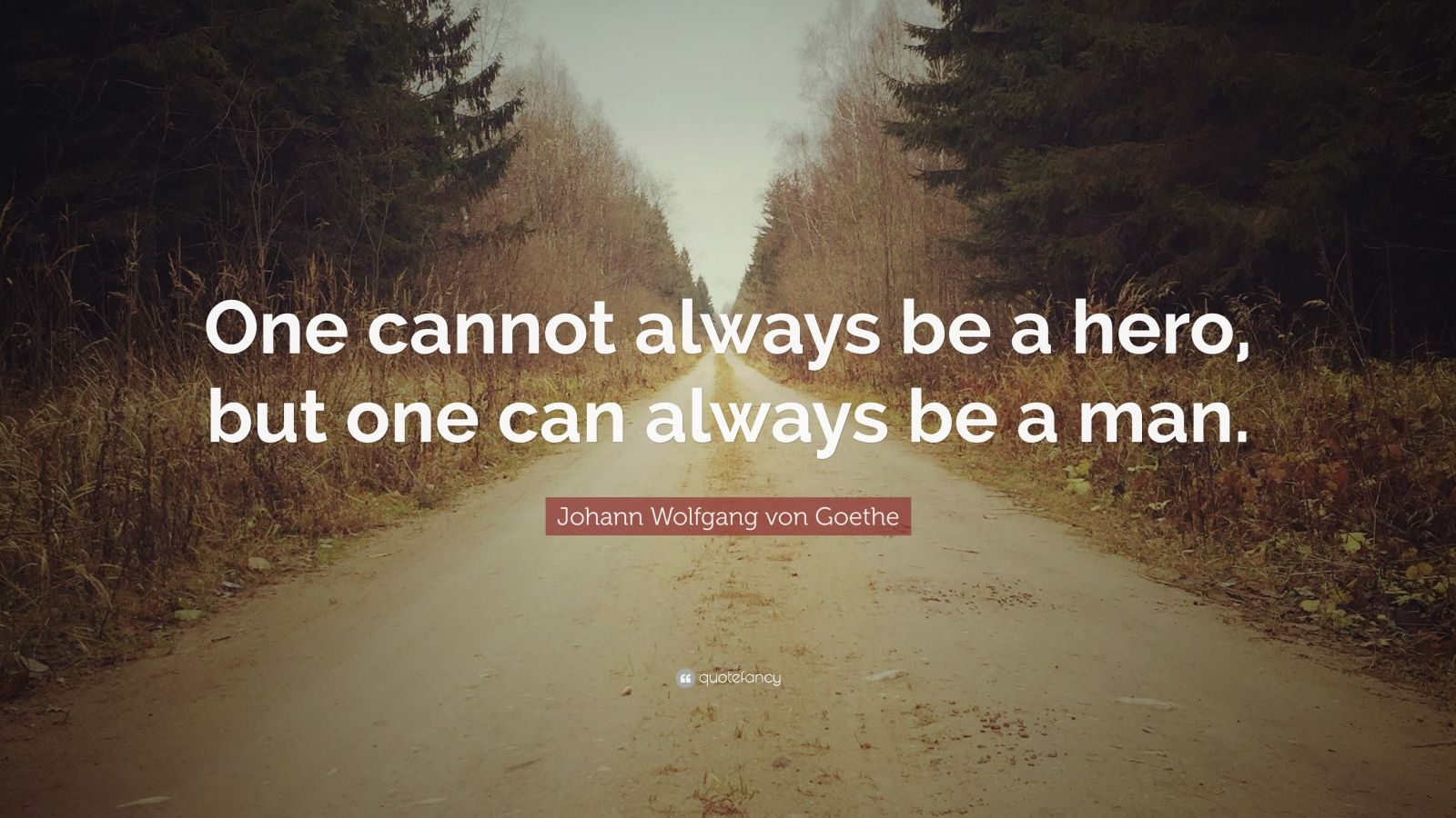 """Johann Wolfgang von Goethe Quote: """"One cannot always be a hero, but one can always be a man."""""""