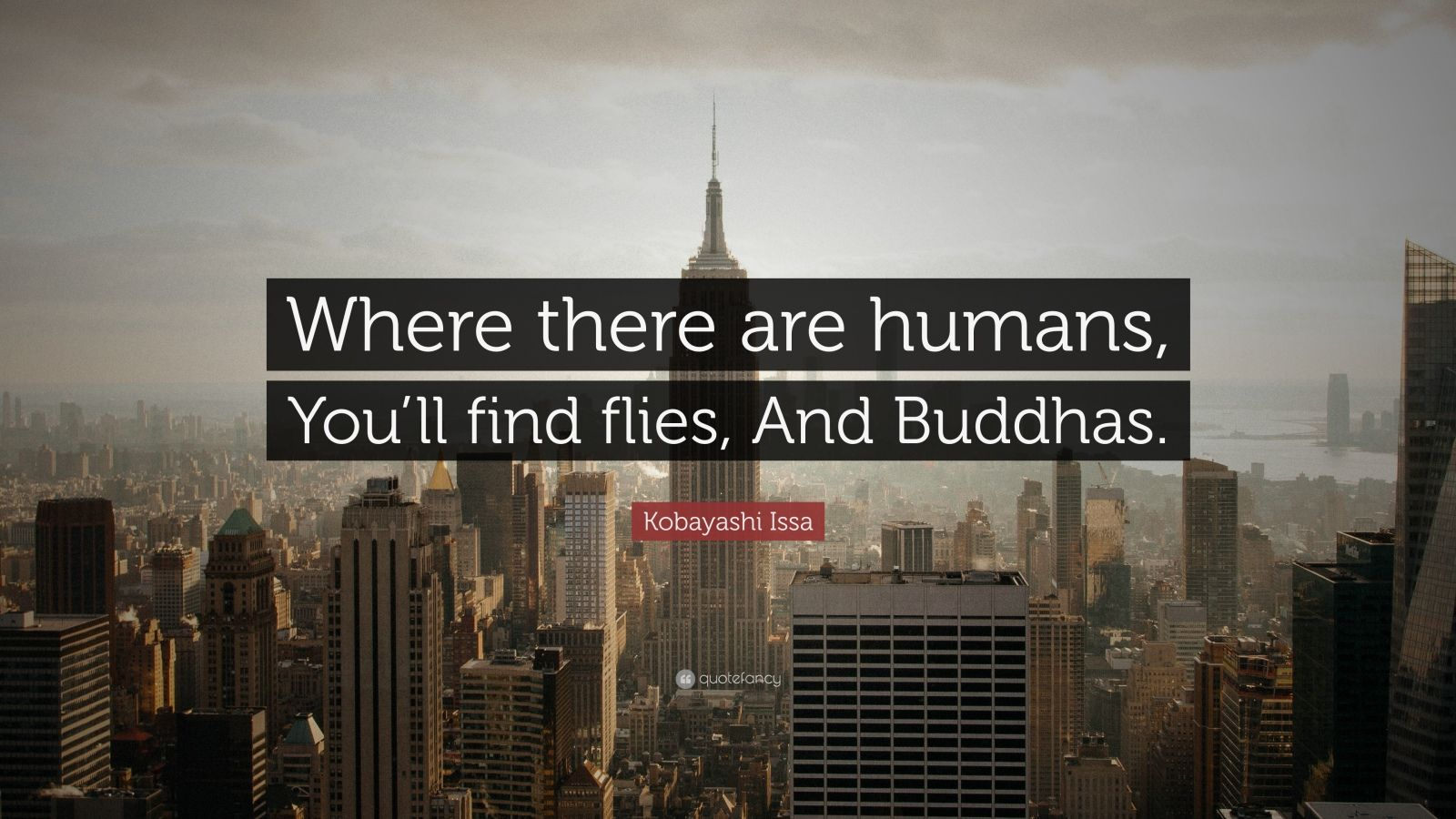 "Kobayashi Issa Quote: ""Where there are humans, You'll find flies, And Buddhas."""