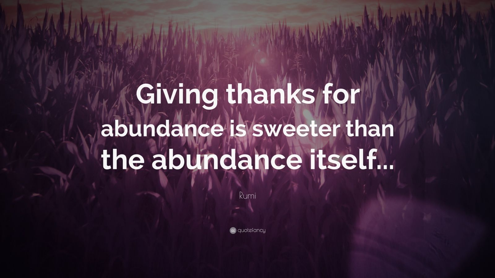 "Rumi Quote: ""Giving thanks for abundance is sweeter than the abundance itself..."""