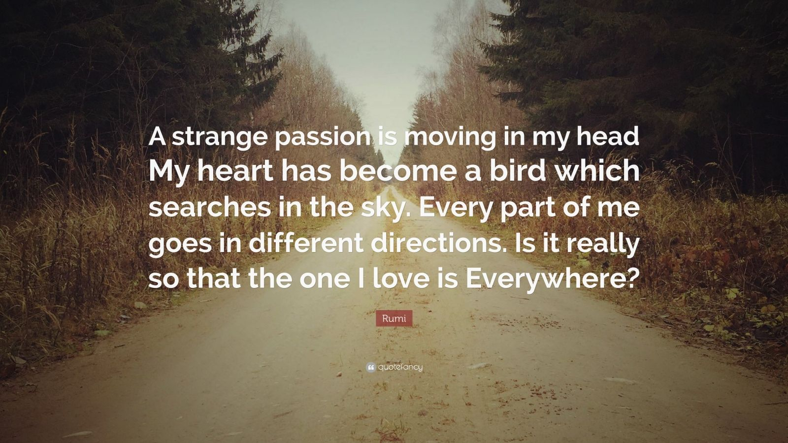 """Rumi Quote: """"A strange passion is moving in my head My heart has become a bird which searches in the sky. Every part of me goes in different directions. Is it really so that the one I love is Everywhere?"""""""