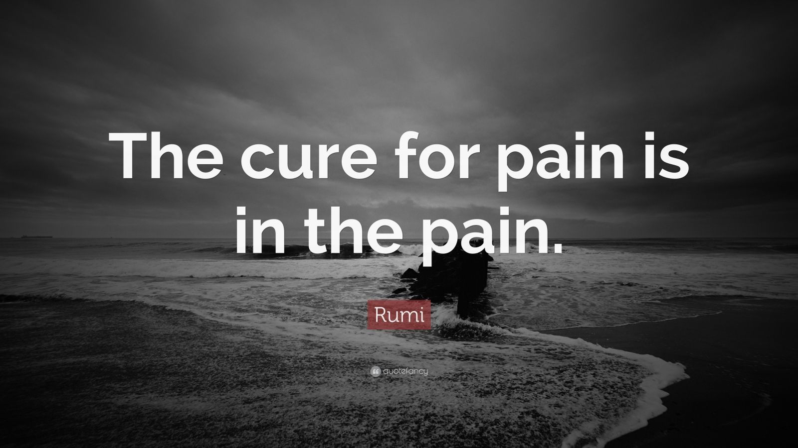 Rumi Quotes About Friendship Fascinating Rumi Quotes 100 Wallpapers  Quotefancy