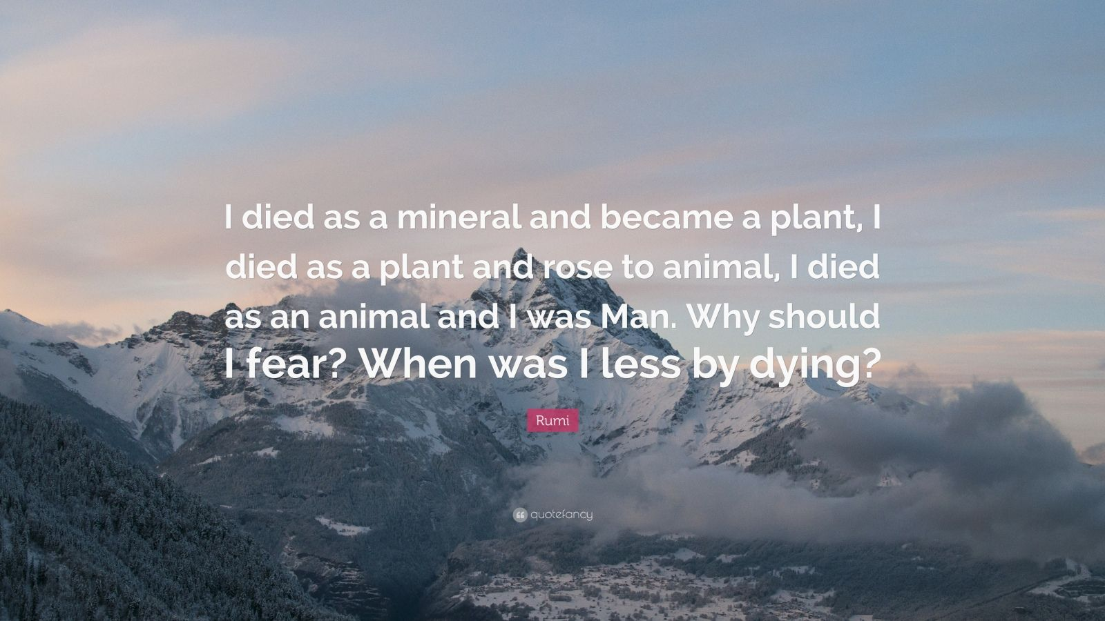 """Rumi Quote: """"I died as a mineral and became a plant, I died as a plant and rose to animal, I died as an animal and I was Man. Why should I fear? When was I less by dying?"""""""