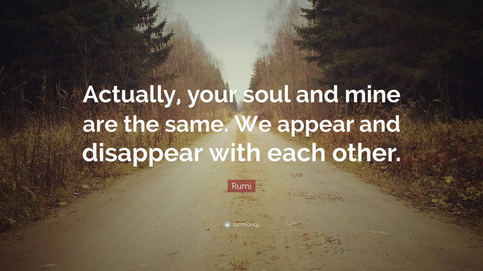 "Rumi Quote: ""Actually, your soul and mine are the same. We appear and disappear with each other."""